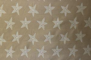 Starfish Sand 102