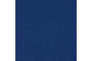 Nassimi Primary Vinyl Royal